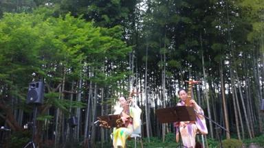竹林の前での演奏