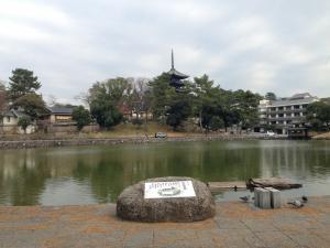 sarusawa1215_convert_20131215113450.jpg