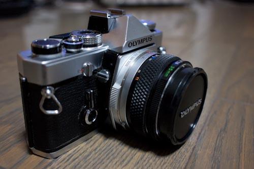 Photo-35(17mm)