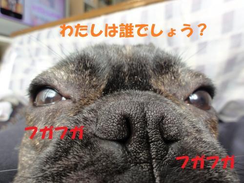 1_convert_20120303125029.jpg