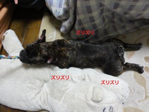 2012_0121_205558-DSC01984_convert_20120121232800.jpg