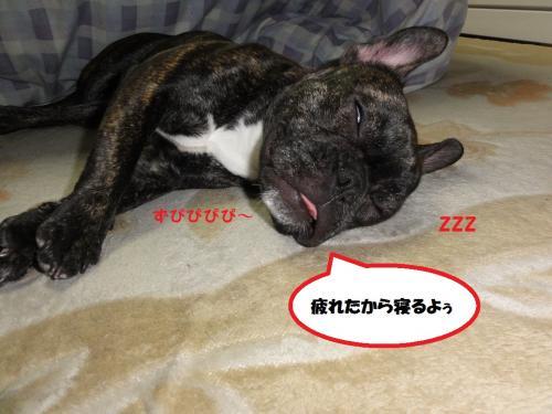 2012_0121_221305-DSC01988_convert_20120121234650.jpg
