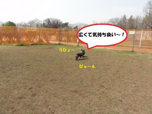 2_convert_20120329003114.jpg