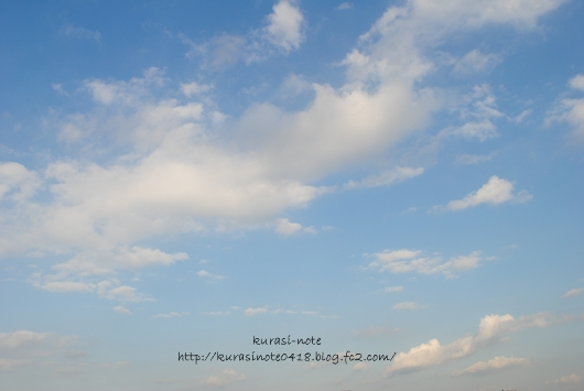 DSC_0021_2013122217444191e.jpg