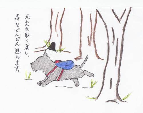 sukyansur1_00037.jpg