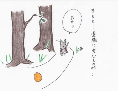 sukyansur1_00038.jpg