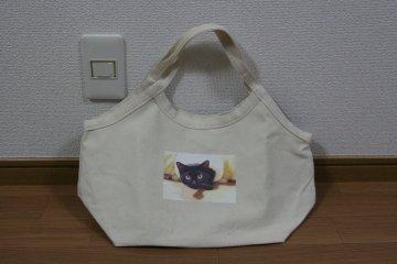 201109_kotabag.jpg