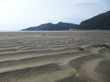 広川ビーチ