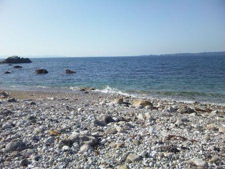 シャクシの浜