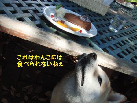 食べられない