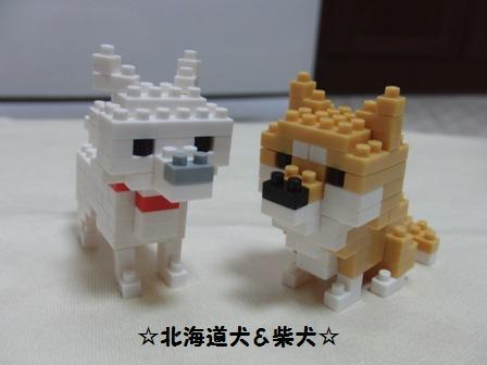 北海道&柴