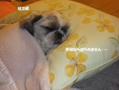 冬ってめっちゃ寝れるねん。