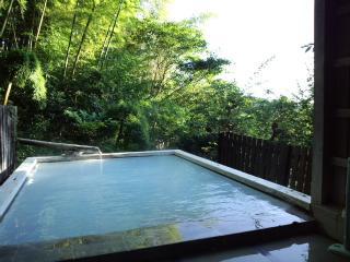 わいた山荘 竹林の湯