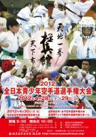 2012JuniorPoster.jpg