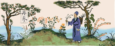 李 時珍 生誕 459 周年