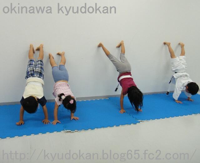 okinawa shorinryu kyudokan 20111117 006