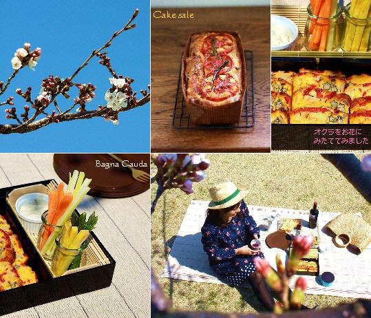 桜花賞でピクニック3