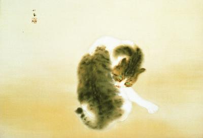 班猫.jpg