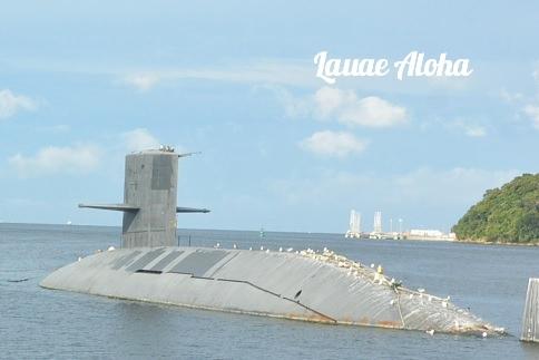 退役潜水艦