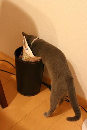 ゴミ箱れな