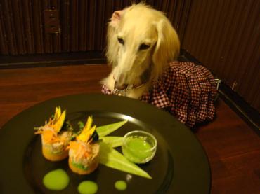 ワンコの夕食