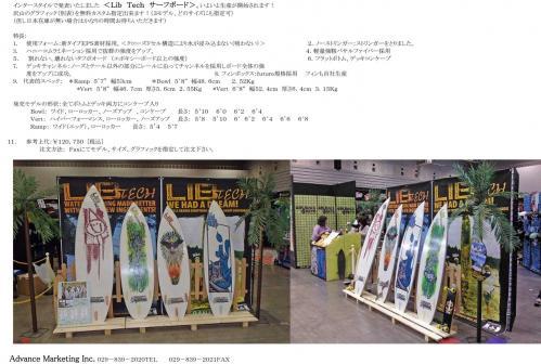 Lib-Surf-1.jpg
