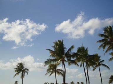 風は強いのに不思議とやさしさを感じるのです・・・
