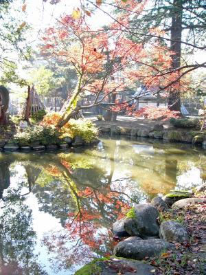 秋晴れの公園3