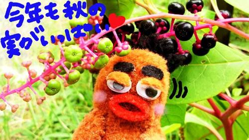 ちくちく村のお庭3☆