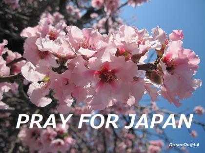 PrayforJapan_Lisaky01