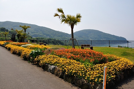 長島2013