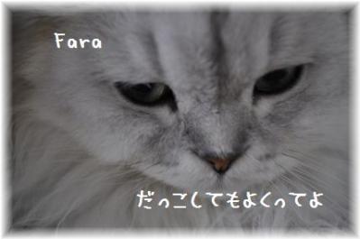 20110918_02.jpg