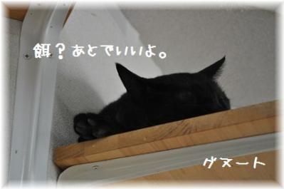 20110918_06.jpg