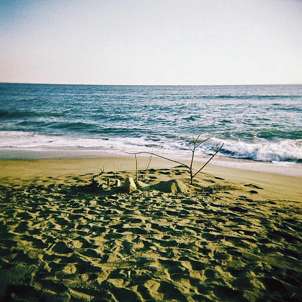 re-浜辺に木のオブジェ000002