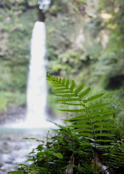 230923 小布瀬の滝10