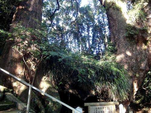 230923 田ノ上八幡神社10