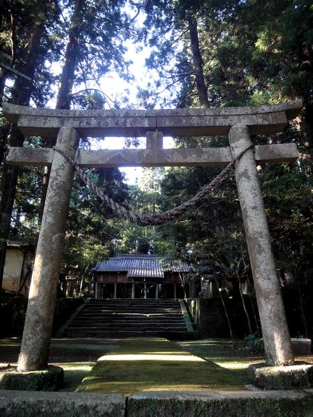 230923 田ノ上八幡神社6