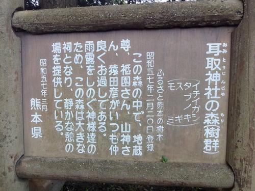 231016 耳取神社の森2