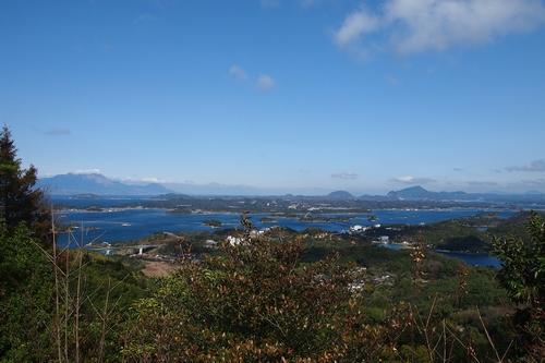 260208 松島オルレ89-1
