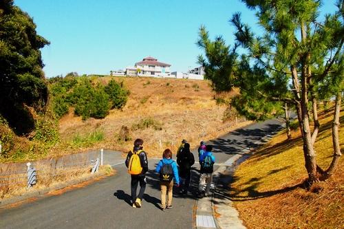 260208 松島オルレ114