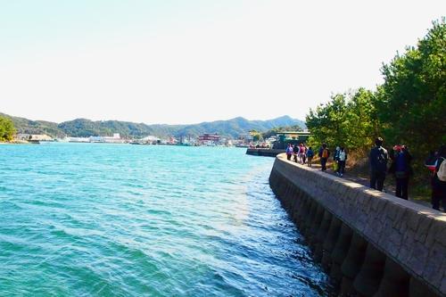 260208 松島オルレ117