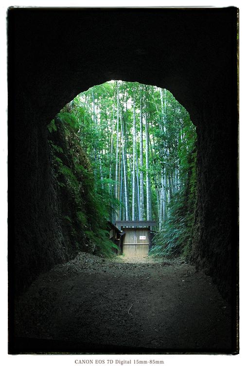 尾鷲市土井竹林の隧道1401kii0345.jpg