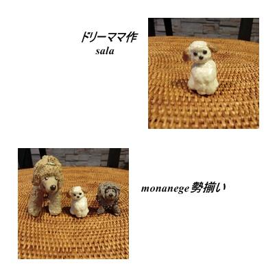 cats1_20111005085455.jpg