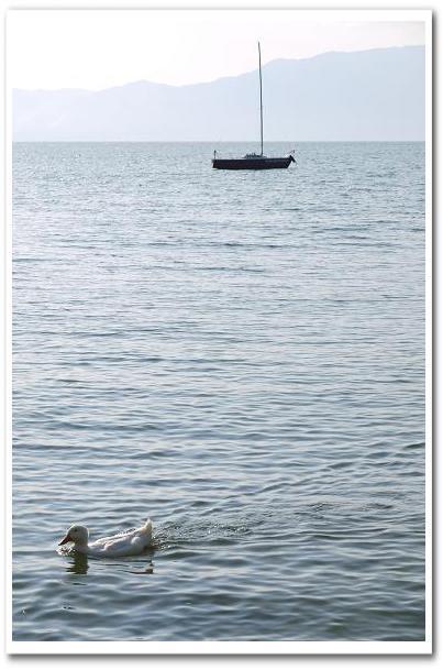 11.09.27 琵琶湖 (9)