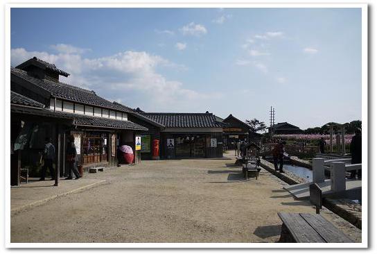 11.11.14~15 小豆島 (33)