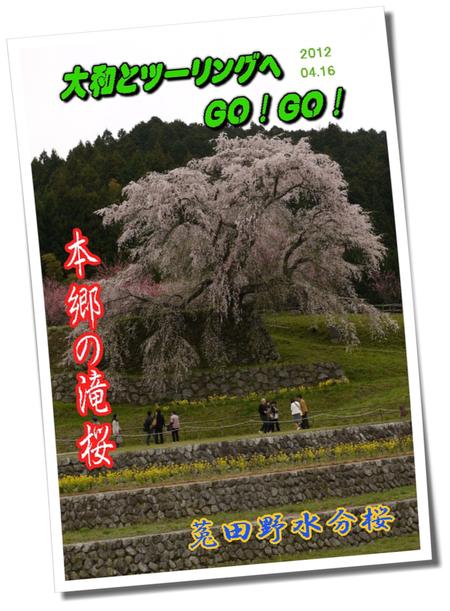 12.4.16 宇陀の桜ツーリング