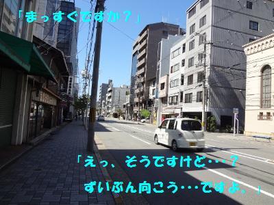 DSC02845a.jpg