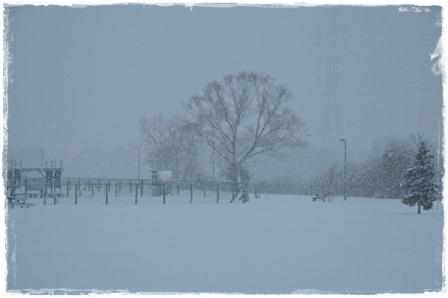 雪景色ドッグラン