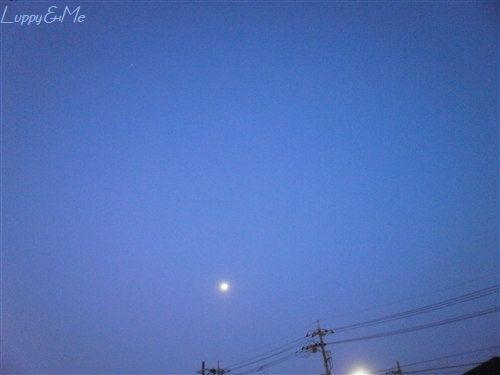 ベランダから見えた月
