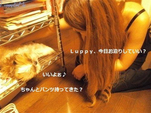 Keiko&Luppy